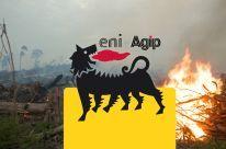 Borneo: Notruf aus dem Nationalpark Sign and share!