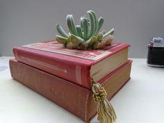 Delicious Book Planters