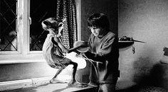 Harry + Dobby