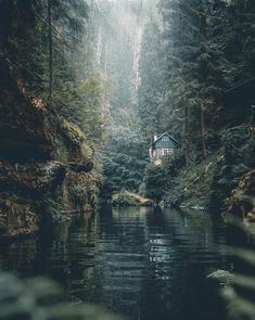 A mysterious world of crystal-clear water, high rock walls covered with moss, and divine tranquillity. This describes the gorges near Hřensko, Czech Republic. ⛰🌲 What would you visit this amazing landscape with ? — 📍 — 📸 Photo by Cabins In The Woods, House In The Woods, Cottage In The Woods, Beautiful World, Beautiful Places, Wonderful Places, Animals Beautiful, Voyage En Camping-car, Haus Am See