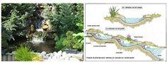 construire un bassin d'eau - Recherche Google