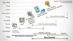 What or Who is a Data Scientist ?