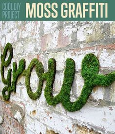 How To Make Moss Graffiti Wall Art | DIY Decor Project Ideas and Tutorial by DIY Ready. http://diyready.com/cool-diy-project-you-probably-didnt-know-how-to-make-moss-graffiti/