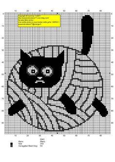grafico gato