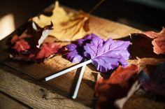 Violet Autumn Lollipops