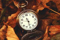 природа, часы, листья, Макро, время