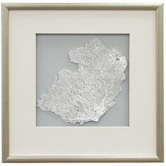 """Featuring a delicate sea fan against a solid backdrop, this framed wall decor brings a coastal-chic touch to your breakfast nook or den.  Product: Framed wall decorConstruction Material: Wood, paper, glass and preserved sea fanColor: Burnished silver frameDimensions: 17.5"""" H x 17.5"""" WCleaning and Care: Wipe with dry cloth"""