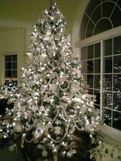 Nice White Christmas Tree And A Great Photo Job Too