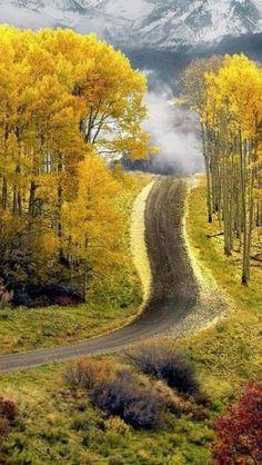 Aspen road in Boulder, Colorado by BogRaz