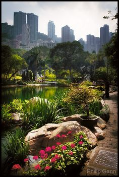 """Hong Kong Park is like an island of serene greenery, right amid the city's skyscrapers, and is well worth visiting before or after the """"Peak Tram""""...      Hong Kong Park by Philip Gann Photography, via Flickr"""