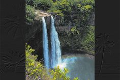 Kauai Visitors Bureau ~ www.kauaidiscovery.com The purpose of the Kauai Visitors Bureau is to promote tourism through effective partnerships with community, government and business. We encourage and support a healthy environment and welcome our visitors with Aloha, integrity and respect.