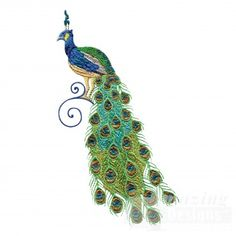 Pretty peacock embroidery design