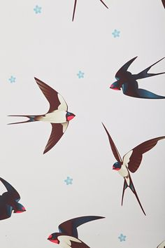 Walls Need Love Barn Swallows Removable Wallpaper - Urban Outfitters