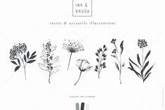 Ink botanicals, logos & patterns by Lisa Glanz on Florist Logo, Illustrator Cs5, Premium Logo, Elegant Logo, Botanical Drawings, Photoshop Cs5, Free Graphics, Logo Inspiration, Graphic Illustration