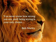 Strong!!!