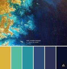 Gold Color Palettes, Blue Colour Palette, Blue Color Schemes, Bedroom Color Schemes, Color Azul, Paint Palettes, Gold Colour, Navy Color, Blue Wall Colors