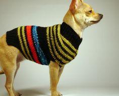 NEON  luxury brand la bamba dog sweater
