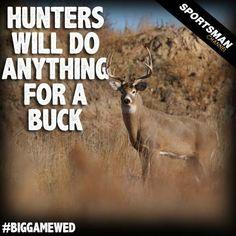 #Hunting #meme #Buck #whitetailDeer