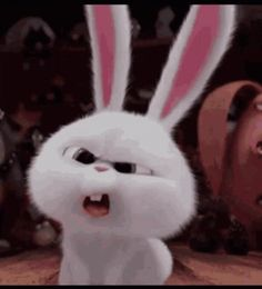 The perfect Rabbit Peek Serious Animated GIF for your conversation. Discover and Share the best GIFs on Tenor. Pink Wallpaper Anime, Cute Disney Wallpaper, Galaxy Wallpaper, Cute Bunny Cartoon, Cute Cartoon Pictures, Cartoon Gifs, Cute Cartoon Wallpapers, Snowball Rabbit, Animiertes Gif