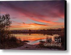 Sunrise Reflections Canvas Print / Canvas Art By Robert Bales