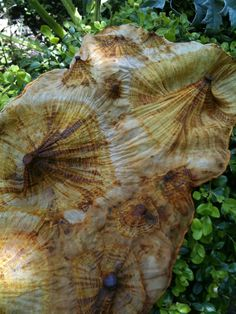 Shibori rust dyeing - Vinegar and screws bound in fabric -https://flextiles.wordpress.com/category/dye/