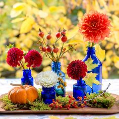 Party Decoration: FlowersWhether they're single stems or showcased as a bouquet, fresh-cut dahlias make any party prettier. Play up fall's fiery palette by pairing the ooh-la-la flowers with a cool blast of blue. We used vintage seltzer bottles, but any vessels -- like Mason jars or on-hand vases -- will do.