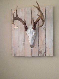 Whitetail Deer Skull Mounted on Reclaimed Wood Deer Skull Decor, Deer Art, Deer Skulls, Deer Antlers, European Mount, Deer Mounts, Antler Art, Skull Art, Barn Wood