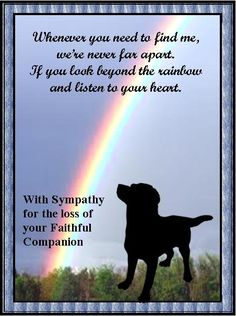 Sympathy For Loss Of Pet Sympathy Quotes Loss Of Pet Quotesgram