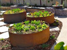 User Galleries - Formboss Metal Garden Edging for lawns, garden beds and Driveways - Page 5
