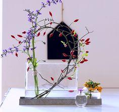 Heute bei mir in der Vase#einrichtung #interior #deko #dekoration #decoration #wohnen #living #tischdeko #herbst #esszimmer #diningroom #vase #blau #blue #lhagebutte Foto: shilly-shally