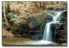 Harris County Georgia offers a wide variety of tourist attractions