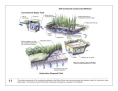 """Acquire excellent tips on """"rainwater harvesting diy"""". They are actually on call for you on our web site. Landscape Concept, Landscape Design, Landscape Architecture, Sponge City, Rainwater Harvesting System, Floating Garden, Water Management, Rain Garden, Water Treatment"""