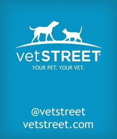 Find veterinarian approved pet health info at Vetstreet.com. Read expert advice on dog breeds, cat breeds, pet care, training and get the latest pet news.