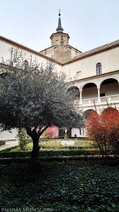 Patio del Museo de Santa Cruz Toledo. Saint Cross Museum, Courtyard Toledo