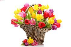 Spring basket flowers basket, flowers) via www. Candy Flowers, Tulips Flowers, Daffodils, Flowers Nature, Good Morning Smiley, Good Morning Good Night, Morning Morning, Morning Coffee, Flower Images Wallpapers