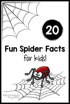 Kids of all ages will love hearing these fun spider facts! They're great for a Halloween theme, learning about nature and the great outdoors, or an animals study. Spider Facts For Kids, Spiders For Kids, Animal Facts For Kids, Fun Facts For Kids, Kindergarten Worksheets, Preschool Activities, Animal Activities, Nursery Rhymes Preschool, Spider Crafts