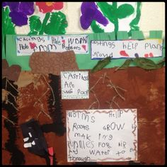 Inquiring Minds: Mrs. Myers' Kindergarten: Worms- The Project ~ team added flowers and roots; documentation to show how worms help plants