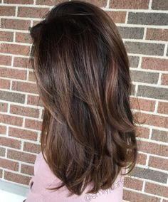 Sultry Chocolate Balayage for Thick Hair Long Dark Hair, Light Brown Hair, Thick Hair, Brown Hair On Fair Skin, Brown Hair Streaks, Asian Brown Hair, Dark Brown Hair With Low Lights, Soft Brown Hair, Natural Brown