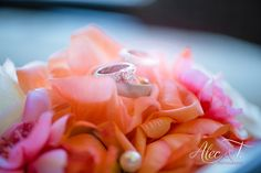 Beautiful Cabo Beach Wedding-Fiesta Americana Resort