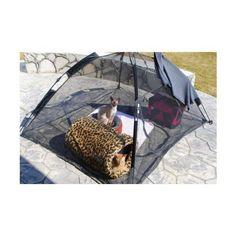 sc 1 st  Pinterest & DIY Cat Tent | Diy cat tent Cat tent and Cat