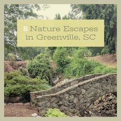 The best parks and preserves near Greenville, SC Travel List, South Carolina, Preserves, Parks, Lost, City, Nature, Naturaleza, Pack List