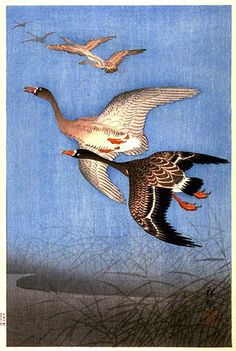 Vintage Print of Flying Geese Wooden Gift Tags - outdoor gifts unique cyo personalize Illustrations, Illustration Art, Art Canard, The Wild Geese, Ohara Koson, Bokashi, Art Japonais, Flying Geese, Japanese Painting