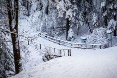 #biegowkiwbieszczadach #biegowki #ustjanowa #ustrzykidolne #zima #narty #crosscountryskiing #nordicski #winter #ski #bieszczady