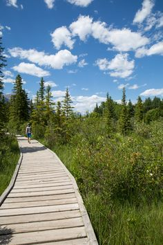 Tips on how to avoid crowds in Banff National Park