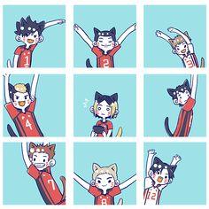 I love cat Manga Anime, Manga Haikyuu, Chibi Anime, Haikyuu Karasuno, Haikyuu Funny, Haikyuu Fanart, Kenma, Kageyama, Anime Naruto
