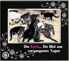 Familie Karl