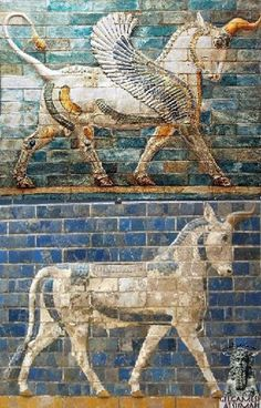 Mural the palace of King Darius the first found in Sousse, Iran and appears in this mural a winged bull and is a replica of the Babylonian bull, which represents the sacred animal of the Babylonian god Adad, god of thunder, but the Achaemenid version adds wings and Frilled with colors .. and the piece below of Ishtar gate (or perhaps from the walls of the procession street) we see the bull, symbol of the Babylonian god of thunder Adad