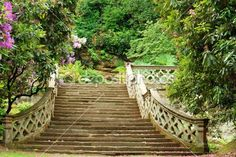 Stone stairs in Hever Castle gardens ~ Kent, England