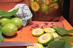 Ořechový likér je báječný proti všem nevolnostem, ovlivňuje trávení a blahodárně působí na žaludek, v malém množství se nikdy nemine účinkem. Ořechový likér děláme ze zelených ořechů do Anny  26.7. pak už ořechy začínají tvořit skořápku.