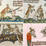 Violent Rabbit Illustrations Found in the Margins of Medieval Manuscripts.